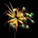 """Palm Tree Burst""  Sunday Lake Fireworks , Wakefield Michigan"
