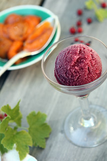 red wine raspberry sorbet | by David Lebovitz
