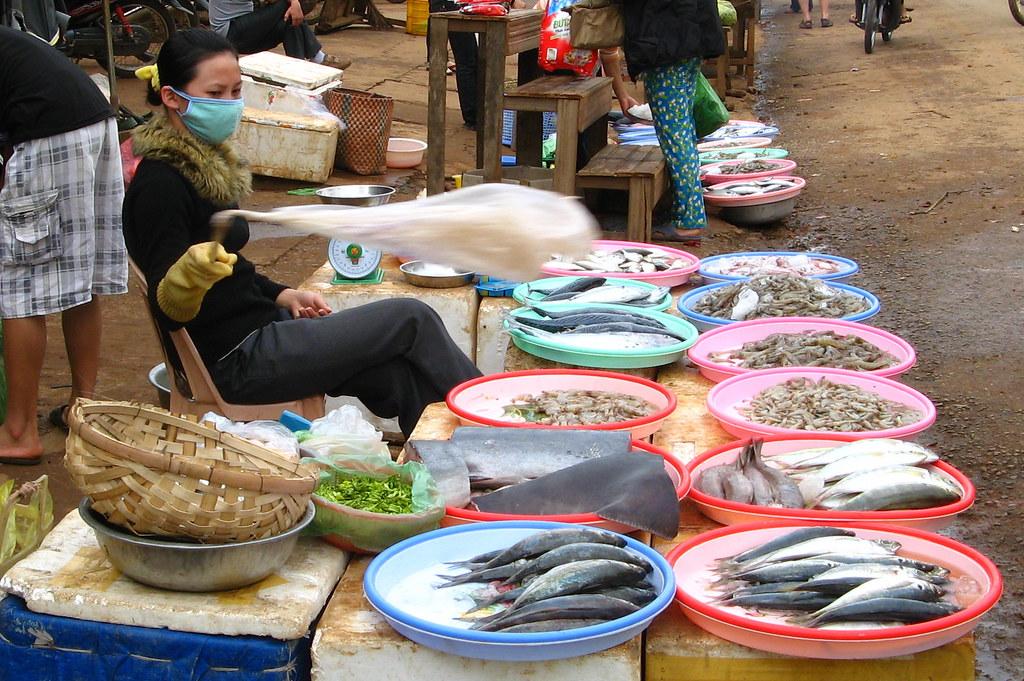 Fish seller outdoor market near dalat vietnam alejandro for Closest fish market