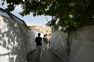 Ascending the Temple Mount | by sondy
