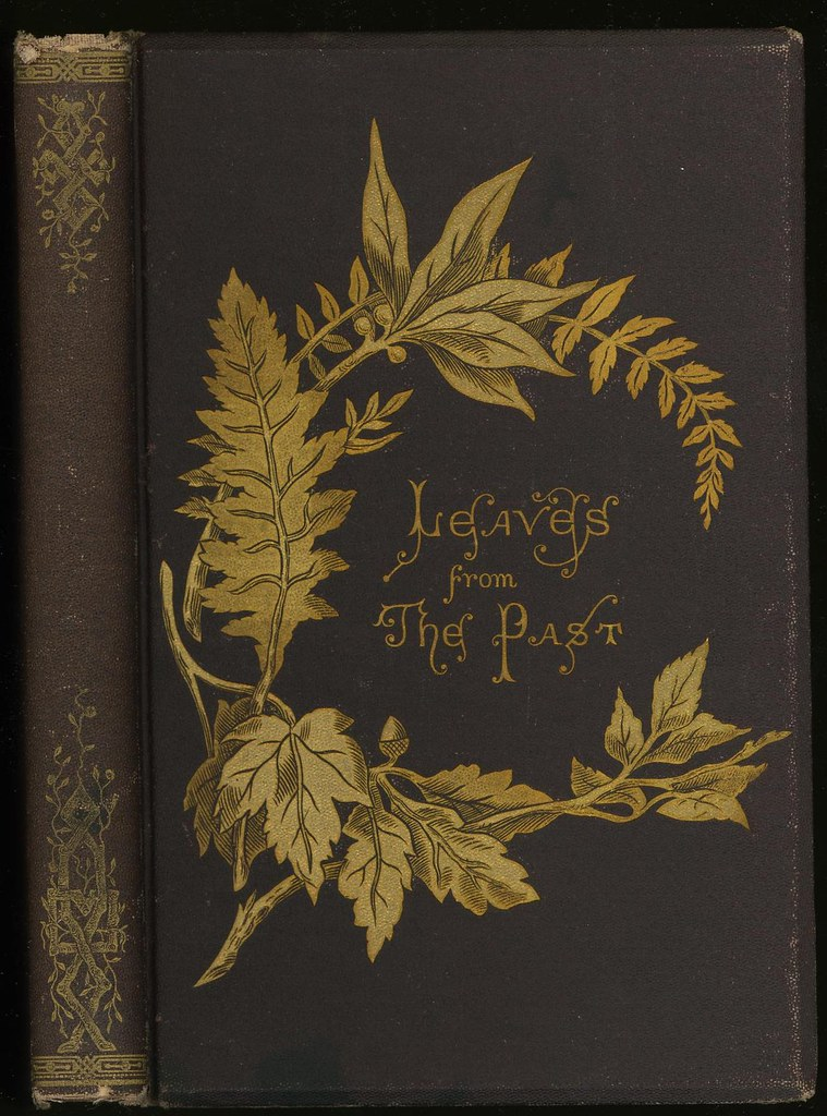 Beautiful Vintage Book Cover : Leaves from the past by mary rebecca darby smith