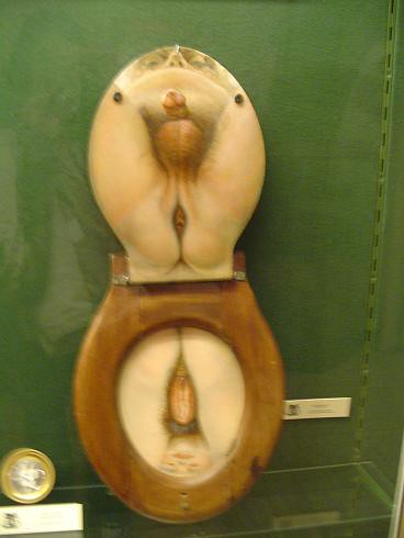 Sex on the toilet seat