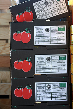 tomato boxes | by David Lebovitz