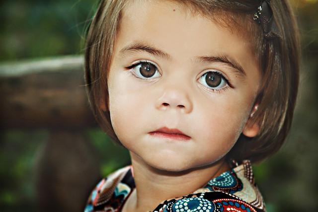 big beautiful eyes flickr photo sharing