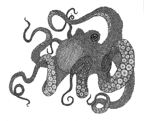 Black Octopus Drawing Octopus Drawing | by