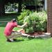 Jon examines shrub