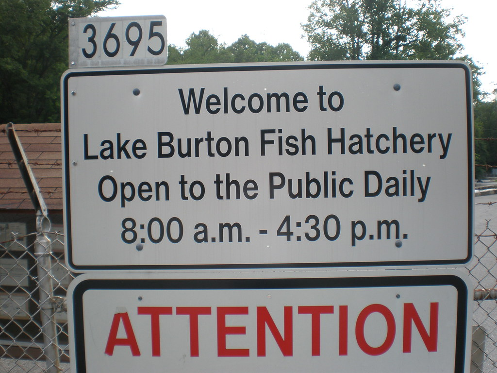 Lake burton fish hatchery clarkesville ga these for Georgia fish hatcheries
