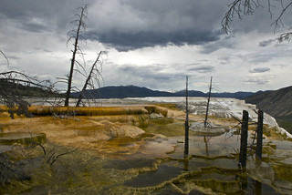 Mammoth Hot Springs | by T 69