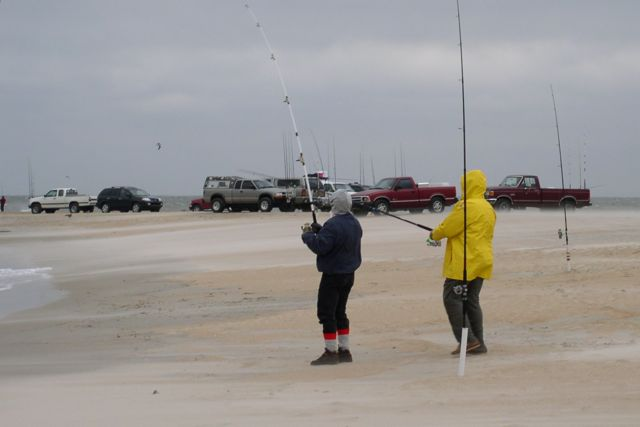 Winter surf fishing at the point surf fishing at the for Surf city nc fishing report