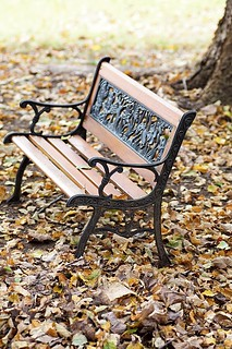 Bench and Leaves | by Fresh Levant