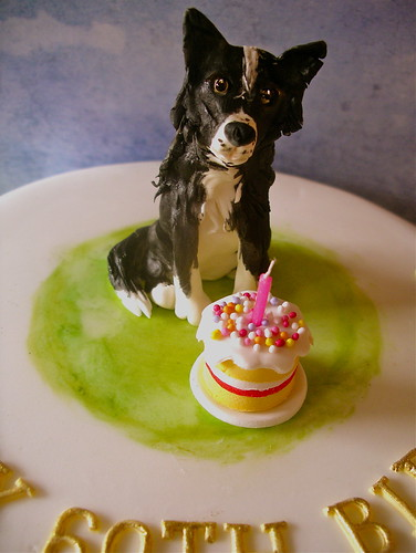 Border Collie Cake Lynette Horner Flickr