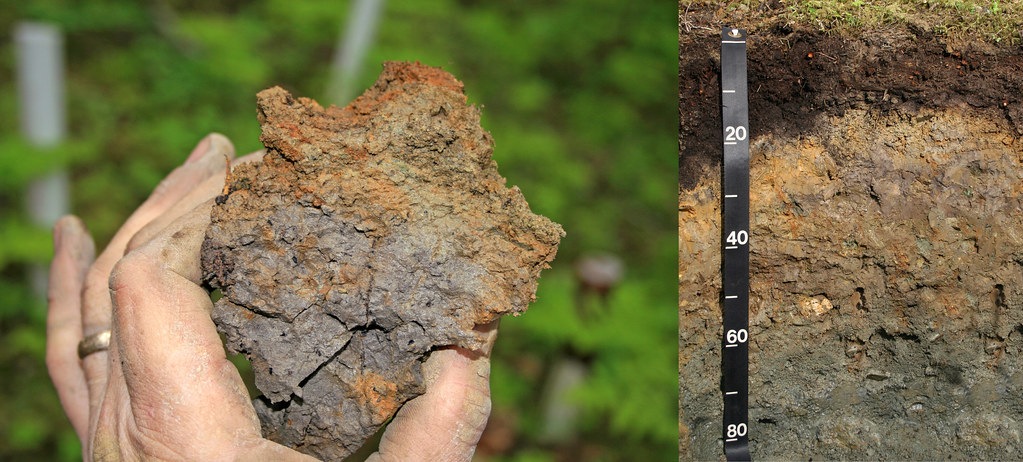 Hydric soils of alaska 1 according to the federal for Soil information in english