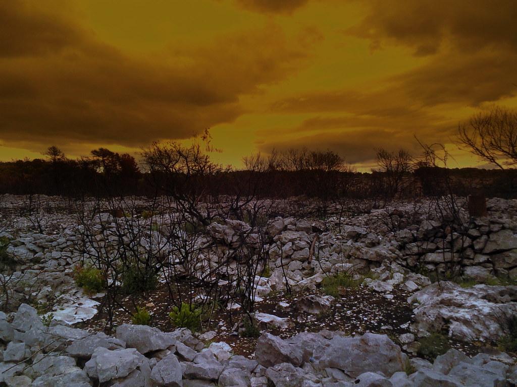 destroyed landscape landscape on hvar croatia after fire