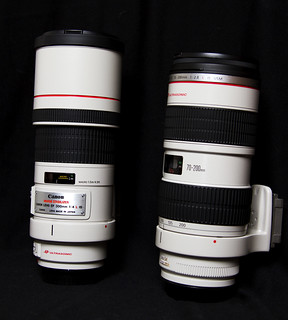 Canon 300mm f4L | by Steve Russell Photography