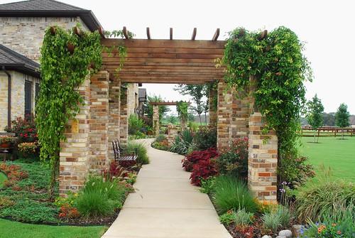 Stone Pergola Walkway Argyle Texas An Ivy Covered
