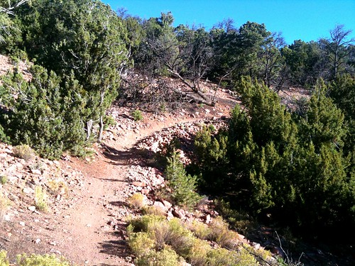 biking routes rural new mexico