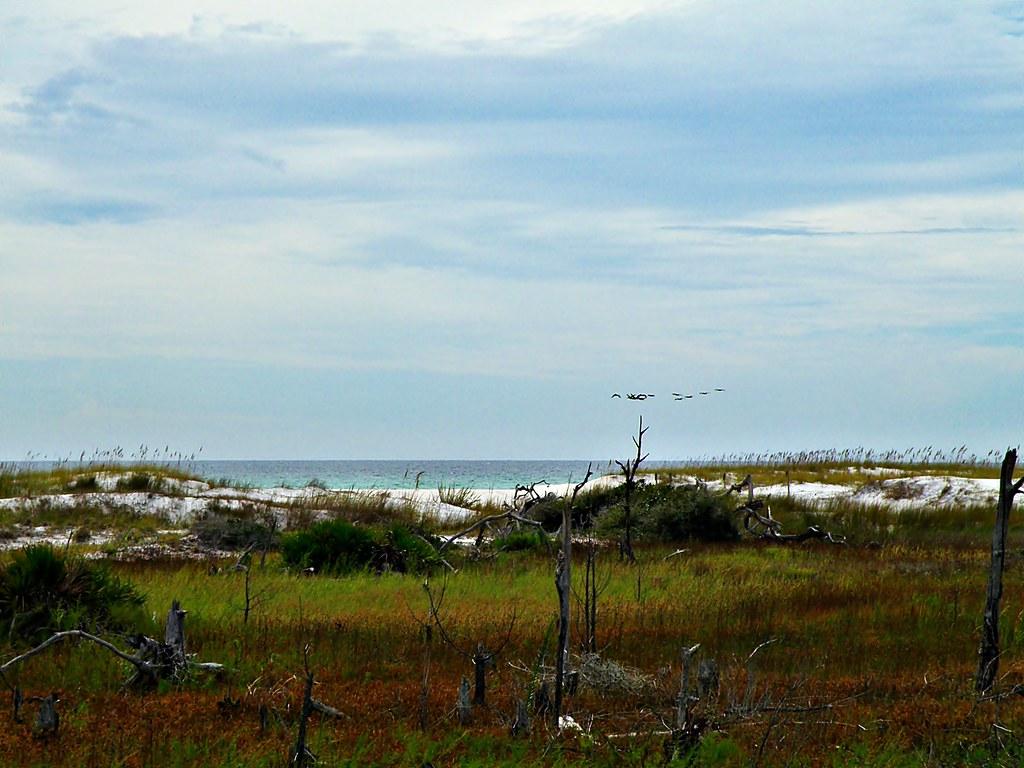 Is Santa Rosa Beach In Walton County