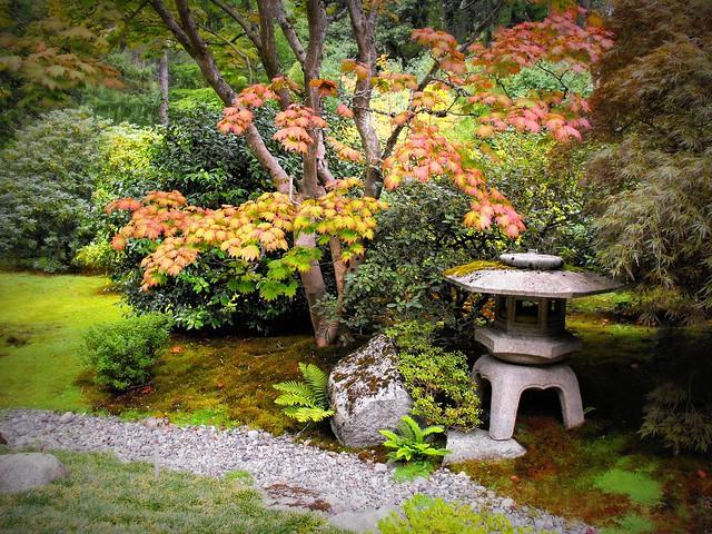 Japanese Botanical Garden Seattle Flickr Photo Sharing