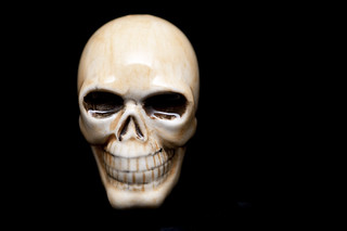 "New Gallery: ""Skulls & Skeletons"" 