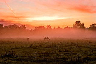 Meonstoke Dawn | by pjs28jack ASINWP, ASITTP & LRPS