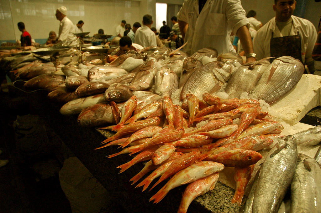 Fish Market In Tangier Morocco Anna Maj Michelson Flickr