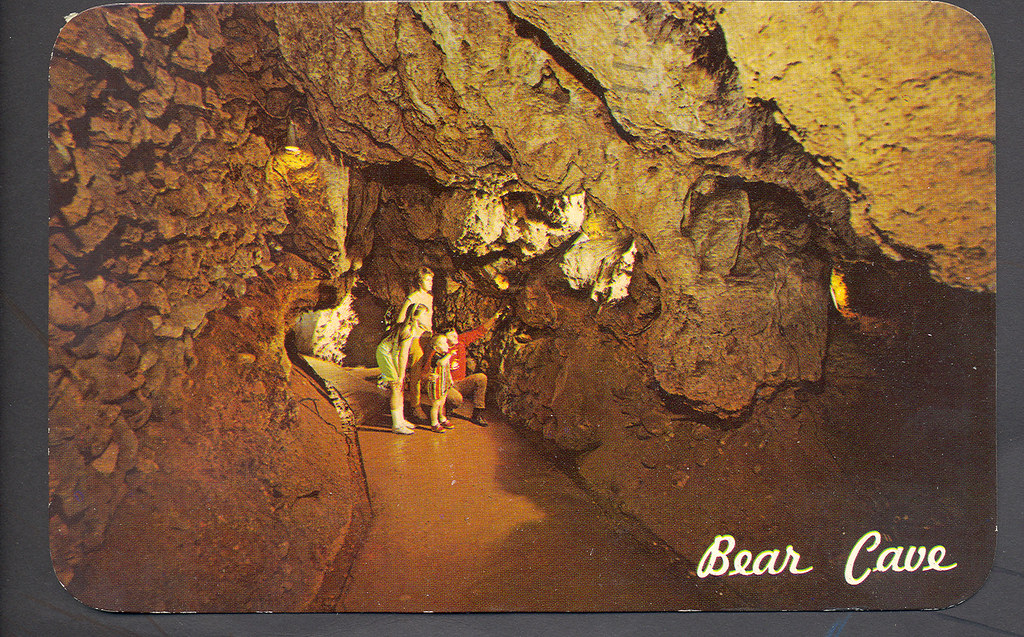 Buchanan MI Roadside Travel And Tourist The Bear Cave One