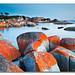 Binalong Bay (II), Bay of Fires, Tasmania