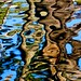 Abstract in canal water