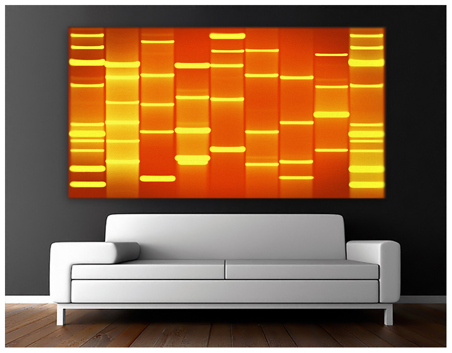 New Styles of DNA Artwork at DNAartgallery.com | Check out t… | Flickr
