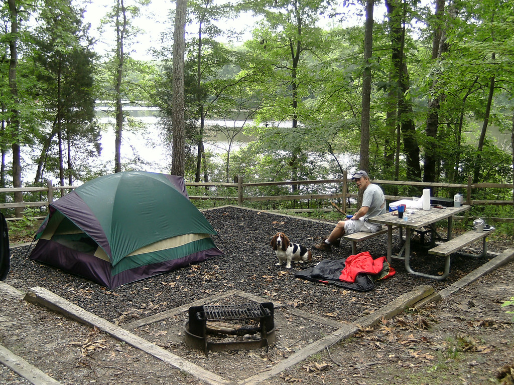 Dog Friendly Campsites Yorkshire Dales