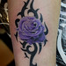 rose with tribal tattoo by Mirek vel Stotker