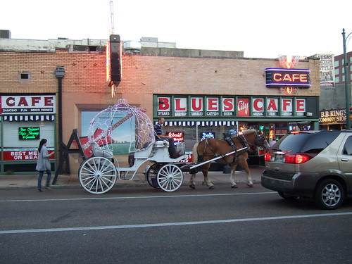 Uptown Carriages Memphis - Our horses around town