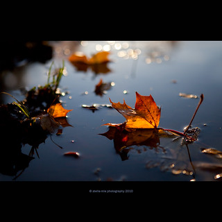 "sinked ""boat"" 