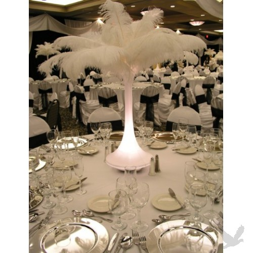 Ostrich Feather Arrangement How To Create Ostrich Feather Flickr