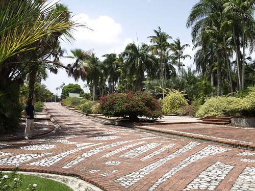 Jardin botanico nacional 3 jardin botanico nacional for Jardin botanico nacional