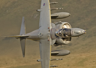 Harrier | by 35NW3