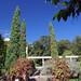 The Peto Garden 2