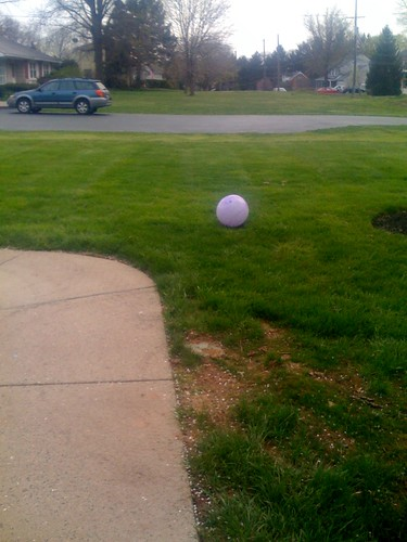 Escapee 1: The ball the dogs barked at - a ot | by Terrier Victims