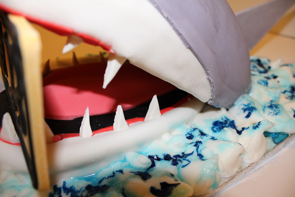 Jaws Birthday Cake Pauls Creative Cakes Flickr