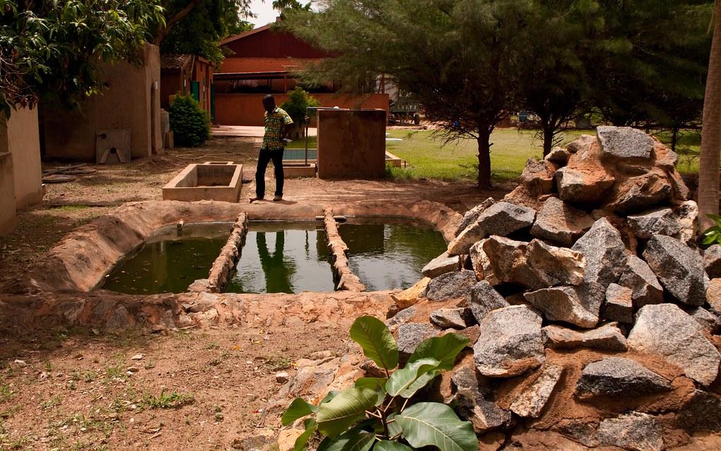 CREPA - Burkina Faso | Flickr - Photo Sharing!