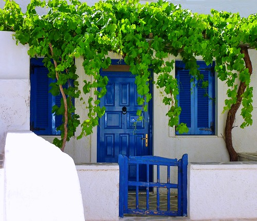 Facade with vine | by Marite2007