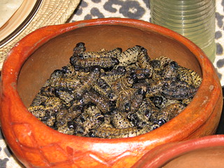 Mopane worms | by NH53