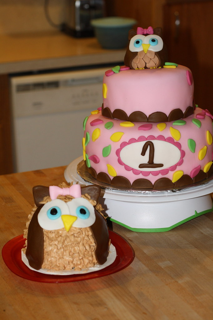 Charlotte S Birthday Cake Quot Look Whoo S Turning 1 Quot I Got