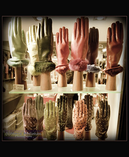 Venice Gloves by (c)Maria Mollohan | by Ave Maria Photography
