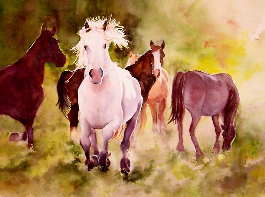 White Horse Watercolor | White Horse 12x16 2010 | Flickr