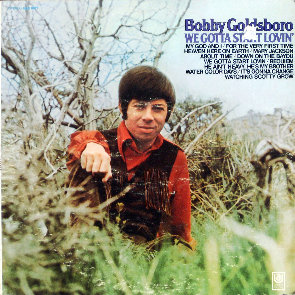 Bobby Goldsboro - The Voice Of Honey