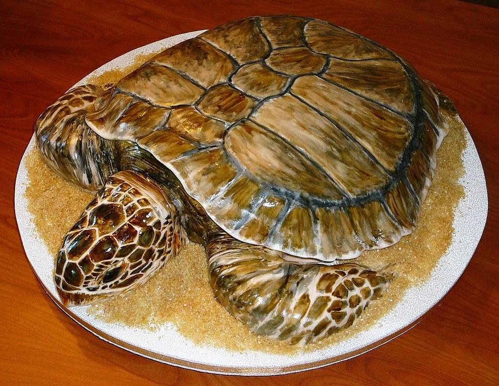 Sea Turtle Grooms Cake