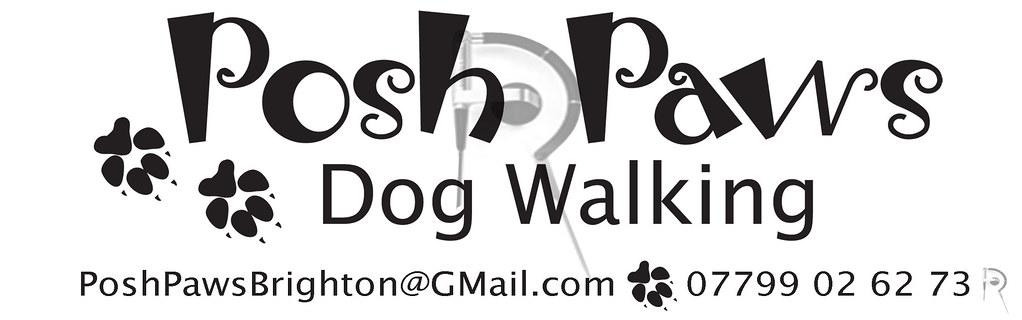 Posh Paws Dog Grooming Ayr