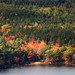 Autumn Foliage in Acadia National Park, #Maine