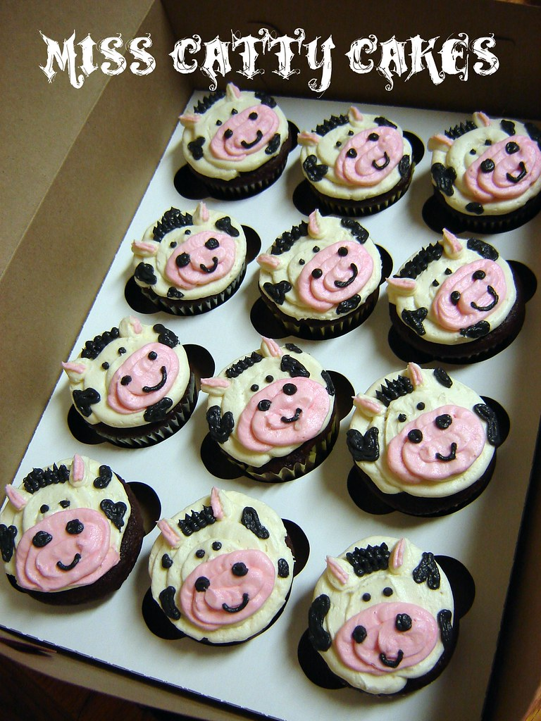 Cow Cupcakes Miss Catty Cakes Cake Design Flickr